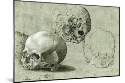 Study of Three Skulls--Mounted Art Print