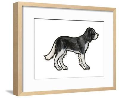 Cocker BW-Sally Pattrick-Framed Art Print