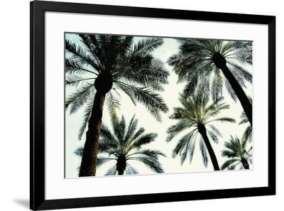 Palm One-Carla West-Framed Art Print