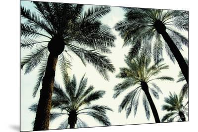 Palm One-Carla West-Mounted Art Print