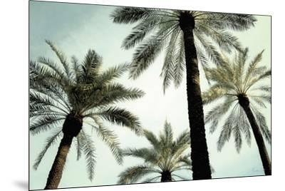 Palm Two-Carla West-Mounted Art Print