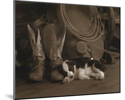 Cowboy Puppy-Robert Dawson-Mounted Art Print