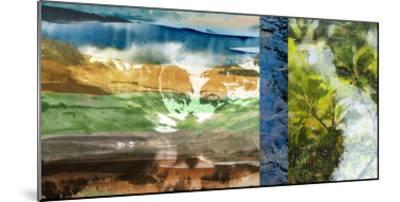 Denver Panorama II-Sisa Jasper-Mounted Giclee Print