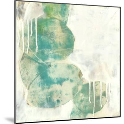 Riverbed II-Jennifer Goldberger-Mounted Giclee Print