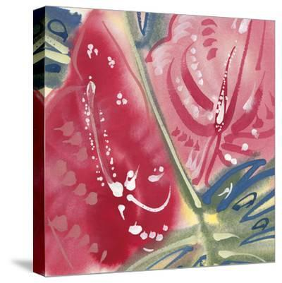 Flamingo Flower II-Alan Halliday-Stretched Canvas Print
