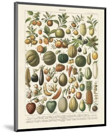 Fruits I-Adolphe Millot-Mounted Art Print