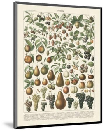Fruits II-Adolphe Millot-Mounted Art Print