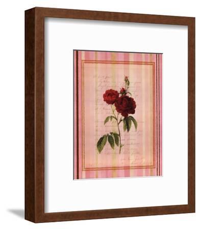 Botanical Rose III--Framed Art Print