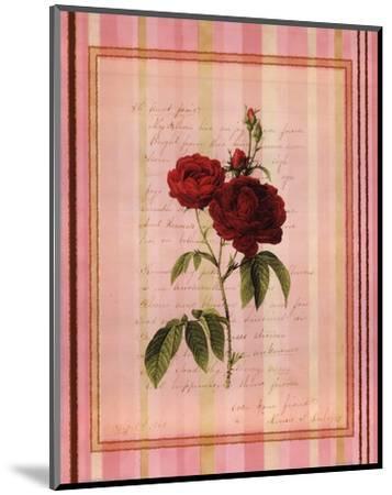 Botanical Rose III--Mounted Art Print