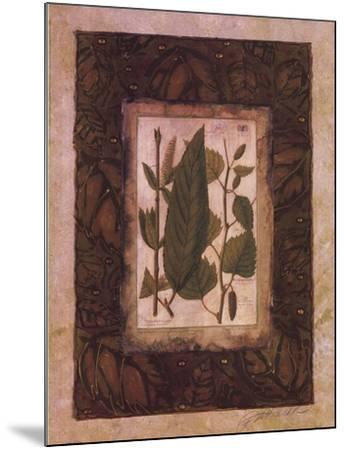 Leaf Study I-Merri Pattinian-Mounted Art Print