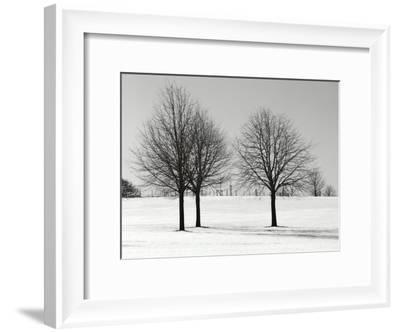 Silhouettes Of Winter I-Ilona Wellmann-Framed Art Print
