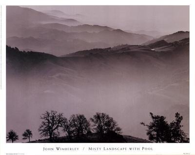 Misty Landscape With Pool-John Wimberley-Framed Art Print