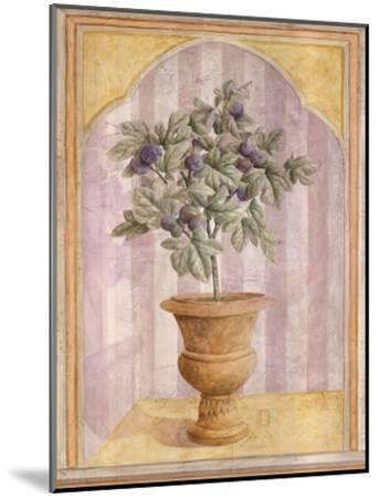 Fig Niche-Lisa Canney Chesaux-Mounted Art Print