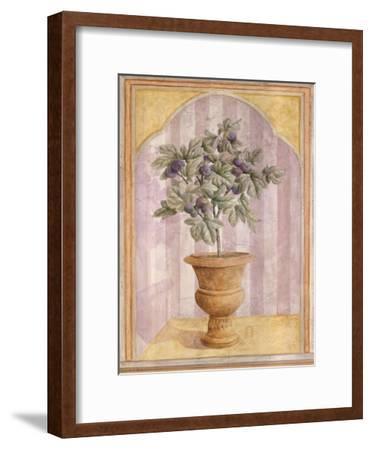 Fig Niche-Lisa Canney Chesaux-Framed Art Print