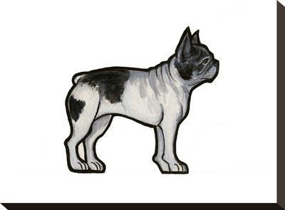 French Bulldog-Sally Pattrick-Stretched Canvas Print
