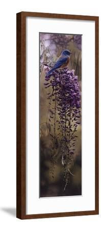Springtime Blues-Terry Isaac-Framed Art Print