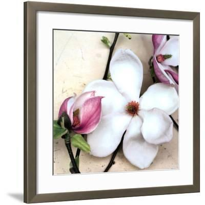 Magnolia Diva I-Heather Johnston-Framed Art Print