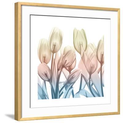 Fantastic Bloom-Albert Koetsier-Framed Art Print