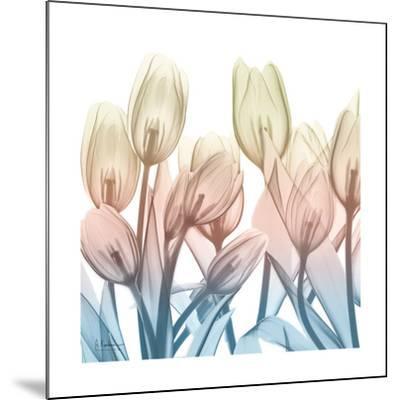 Fantastic Bloom-Albert Koetsier-Mounted Art Print