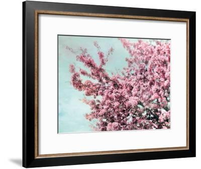 Blossoming Spring-Tracey Telik-Framed Art Print