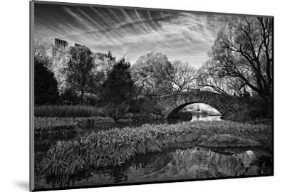 Magic Of Central Park-Joseph Rowland-Mounted Art Print