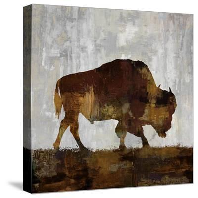 Bison-Carl Colburn-Stretched Canvas Print