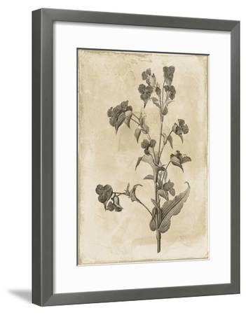 Floral Earthtone Three-Jace Grey-Framed Art Print