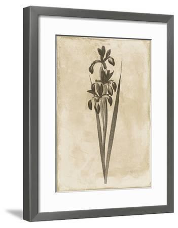 Floral Earthtone Two-Jace Grey-Framed Art Print