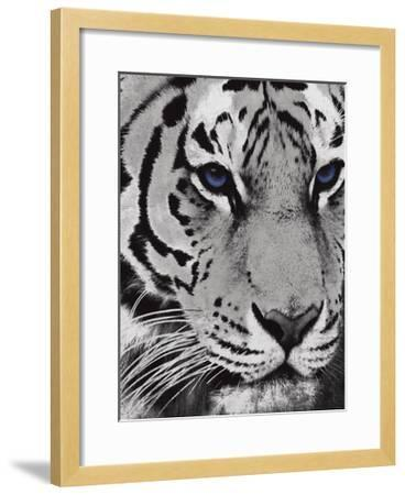 Purple Eyes-Jace Grey-Framed Art Print