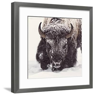 Fortitude-Wink Gaines-Framed Giclee Print