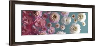 Garden Splash-Assaf Frank-Framed Art Print