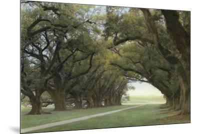 Alley of the Oaks-William Guion-Mounted Art Print