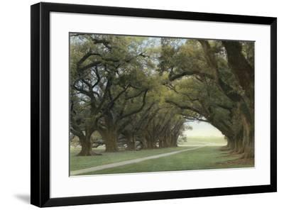 Alley of the Oaks-William Guion-Framed Art Print