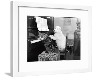 Cat and Dog Playing Piano-Unknown-Framed Art Print