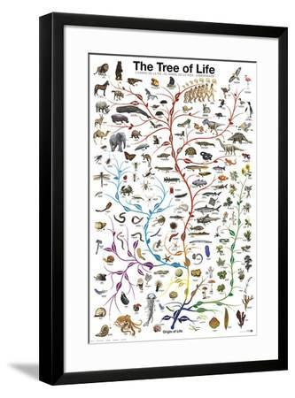 Evolution - The Tree of Life-Unknown-Framed Art Print
