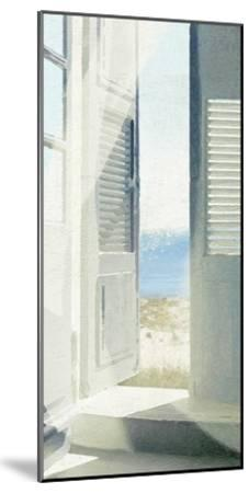 Grey Doors-Noah Bay-Mounted Art Print