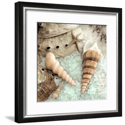 Lagoon Tidepool #1-Alan Blaustein-Framed Art Print