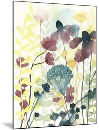 Garden Lace I-Grace Popp-Mounted Giclee Print