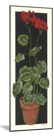 Geranium II-Judy Phipps-Mounted Art Print