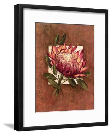 Tropical Squares ll-Barbara Mock-Framed Art Print