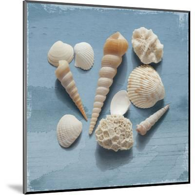Shell Collection II-Bill Philip-Mounted Art Print