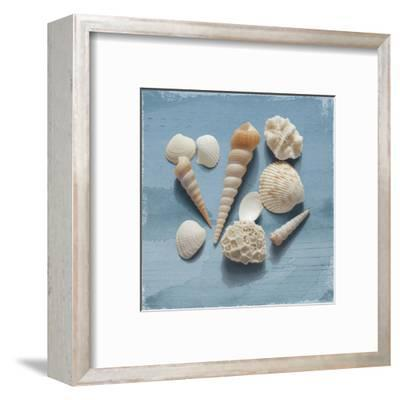 Shell Collection II-Bill Philip-Framed Art Print