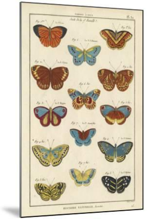Histoire Naturelle Butterflies I-Unknown-Mounted Giclee Print
