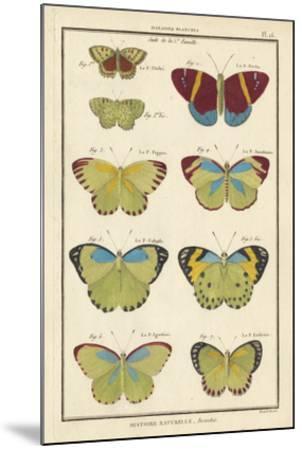 Histoire Naturelle Butterflies II-Unknown-Mounted Giclee Print