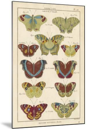 Histoire Naturelle Butterflies V-Unknown-Mounted Giclee Print