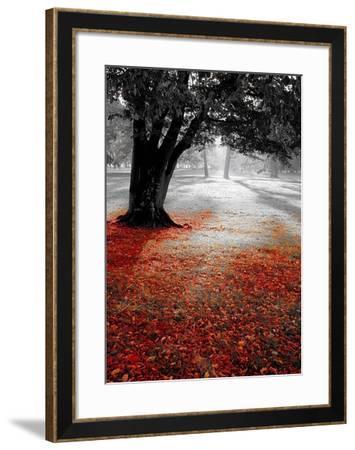 Autumn Contrast-PhotoINC Studio-Framed Art Print