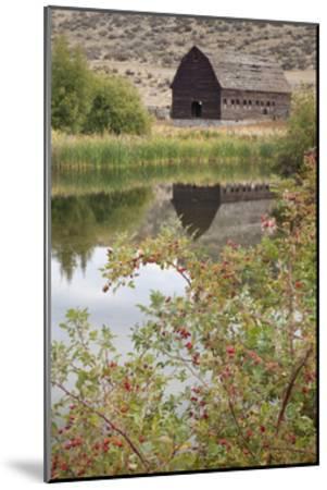 Barn and Pond-Donald Paulson-Mounted Giclee Print