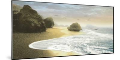 Bodega Beach 1-Diego Ceja-Mounted Giclee Print