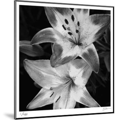 Botanical Study 5-Stacy Bass-Mounted Limited Edition