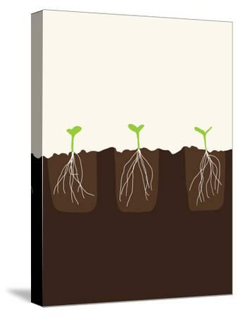 Transplants-Jorey Hurley-Stretched Canvas Print